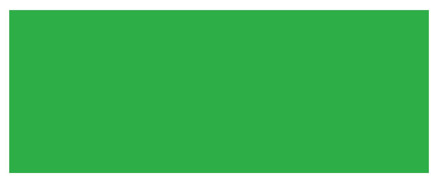 David Ellefson  Youth Music Foundation